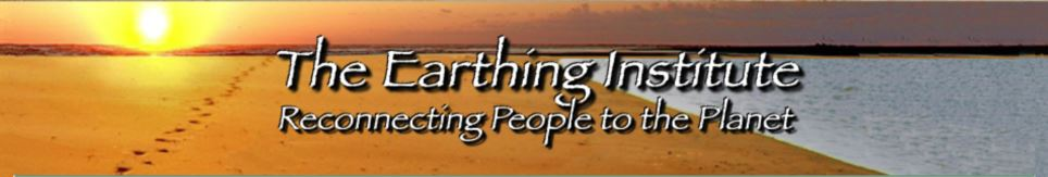 earthing institute